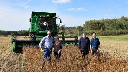 Eerste soya-oogst meer dan geslaagd