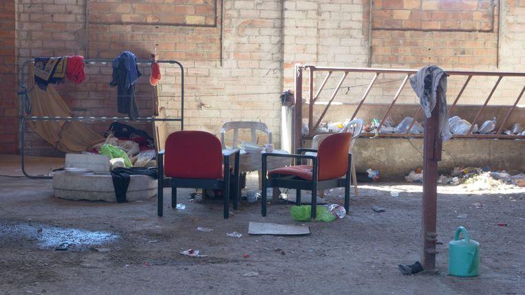 De illegale Marokkaanse fruitplukker Ali woont met tien anderen in een aftandse koeienstal. Beeld Alex Tieleman