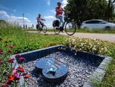 Millingenaar die dodelijk ongeluk van brugklasser Lieke (11) veroorzaakte, wordt niet vervolgd
