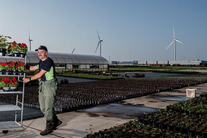 Teler Cor Verweij heeft last van het geluid dat de windmolens van de Avri bij Geldermalsen produceren.