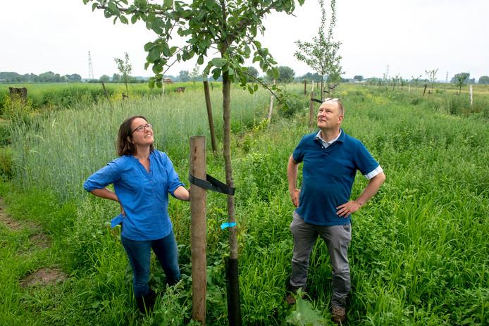Kittie en Henk van Rheede brengen de Eldense Blauwe pruim terug naar Overbetuwe.