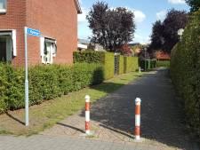 Gemeente plaatst straatnaambord bij Kipwegje Delden