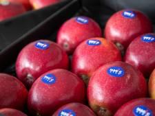 Knapperig, sappig en goed houdbaar: Hier bedenken ze jouw nieuwe droomappel