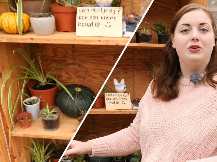 Planten ruilen in de plantenbieb: 'Elke keer een verrassing'