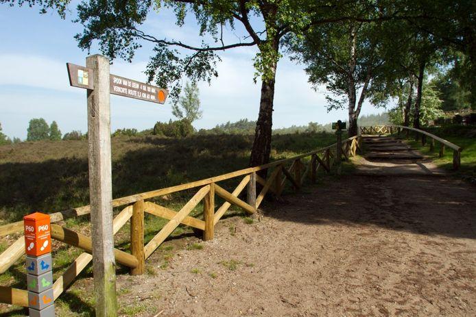 Spoor van de Leeuw (rode stip/paaltjes) heet de gekozen wandeling over de Lemelerberg. Foto Erna Lammers