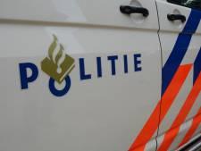 Jonge vandaal (18) springt op daken en motorkap van politieauto's in Doetinchem