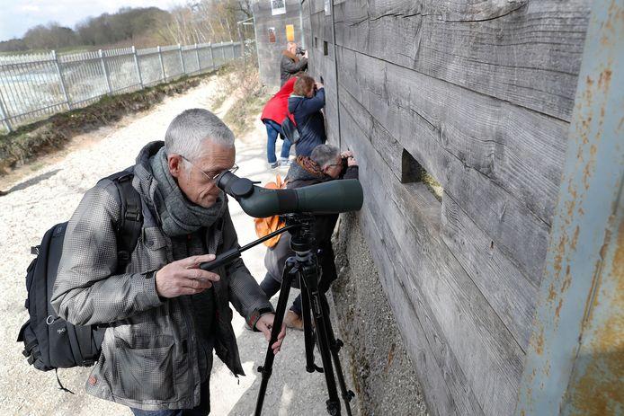 Geert Postma (65) uit Wijchen richt zijn kijker op de Oehoe in de steengroeve in Winterswijk