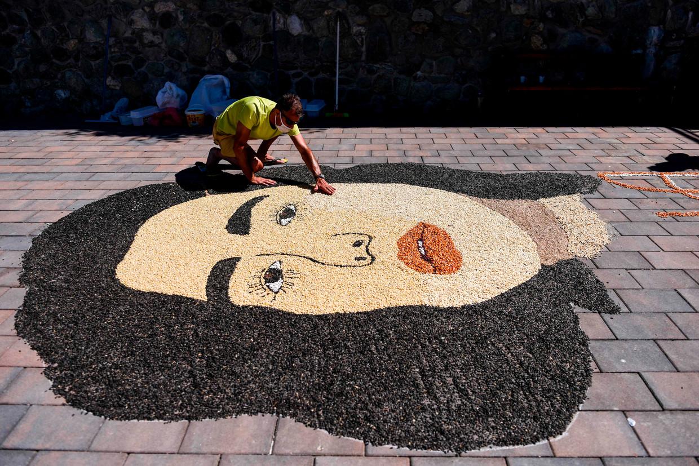 Een Kosovaarse kunstenaar legt de laatste hand aan een portret met graankorrels en zaden van Dua Lipa, een populaire Britse zangeres van Kosovo-Albanese afkomst. Beeld AFP