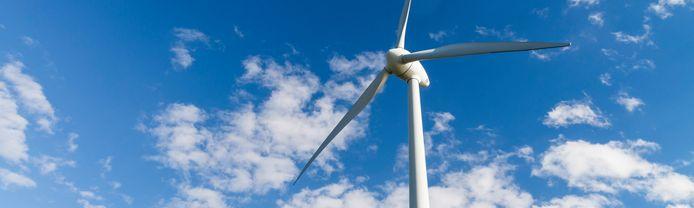 De gemeente Terneuzen ziet geen graten in de nieuwe windturbines in de buurt van natuurgebied Canisvliet.