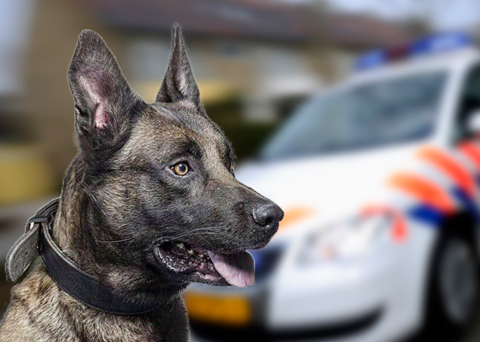 Politiehond Hunter is overleden.