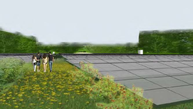 Defensie bang voor storingen door zonnewoud in Zeewolde