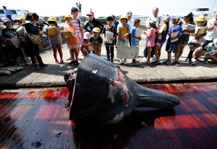Een schoolreisje naar de haven van Minamiboso waar walvisjagers de kop van een walvis tonen bij de start van de walvisvangst. De kinderen mochten daarna proeven van het gebakken vlees.