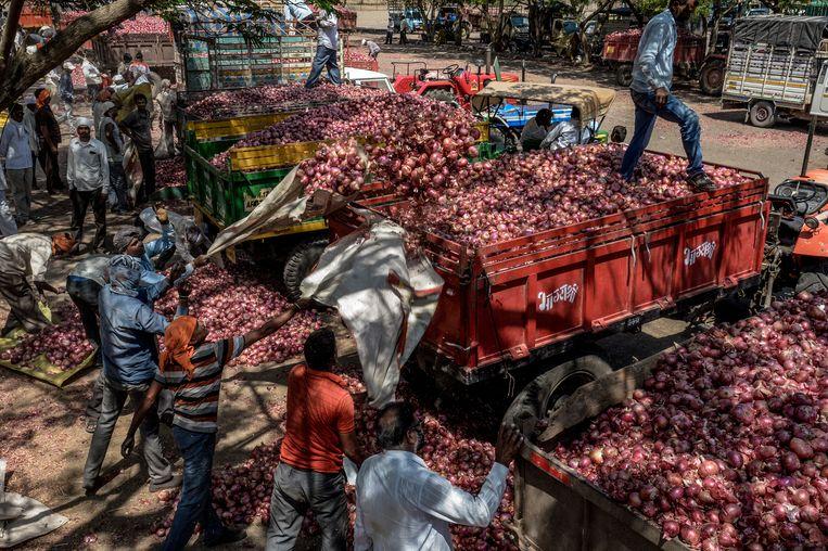 Marktkooplui laden uien uit op een markt in Lasalgaon in India. In april was een uientekort nog moeilijk voor te stellen.  Beeld ATUL LOKE/NYT/HH