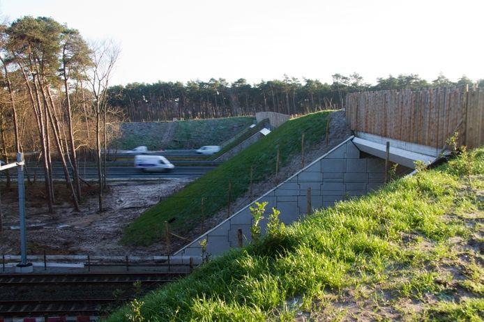 Het ecoduct bij Hulshorst in aanbouw. Foto Erna Lammers