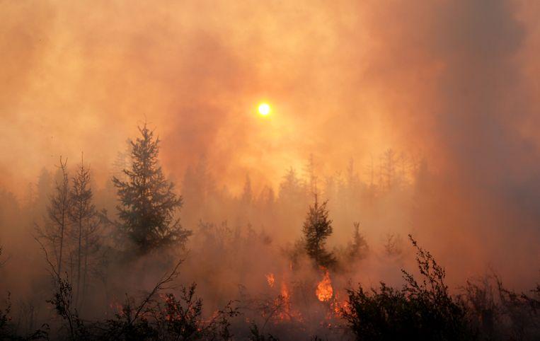 Een natuurbrand in Jakoetië in het noordoosten van Rusland. In koolstofrijke veenbodems in de toendra's kan het vuur de hele winter in de ondergrond blijven smeulen.  Beeld TASS via Getty Images