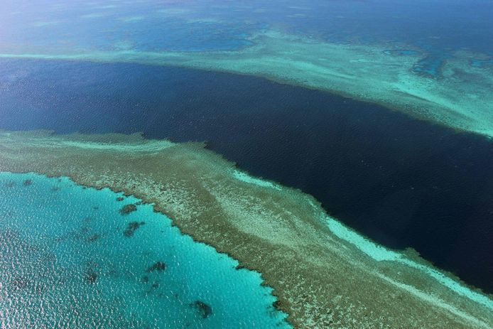 Une partie de la Grande Barrière de corail en Australie.