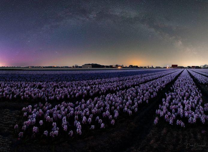 Een fotograaf kon Noorderlicht in Noord-Holland vastleggen met zijn camera, met uitzonderlijke beelden als resultaat.