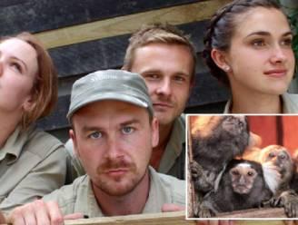 Verzorgers maken furore met imitatiefoto's van dieren
