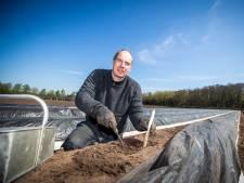Even geen asperge meer te krijgen bij aspergekweker Buijs in Bilthoven