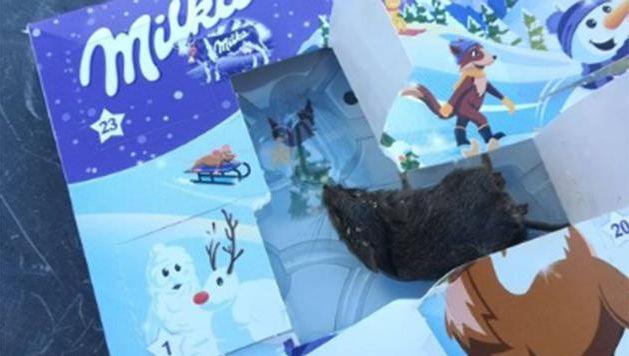 La souris trouvée dans la case 14 décembre