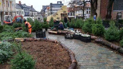"""Leerlingen VIBO gestart met aanleg van Wintertuin van 800 vierkante meter: """"5.000 viooltjes, kerstbomen en houten herten"""""""
