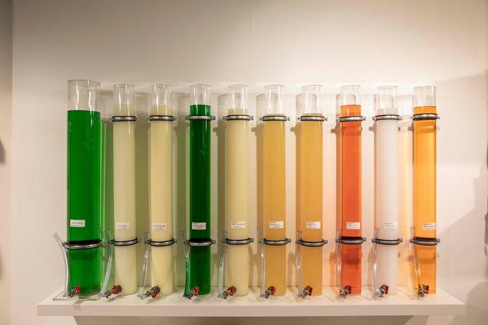 De verschillende soorten shampoo waar je je flesje mee kan vullen.