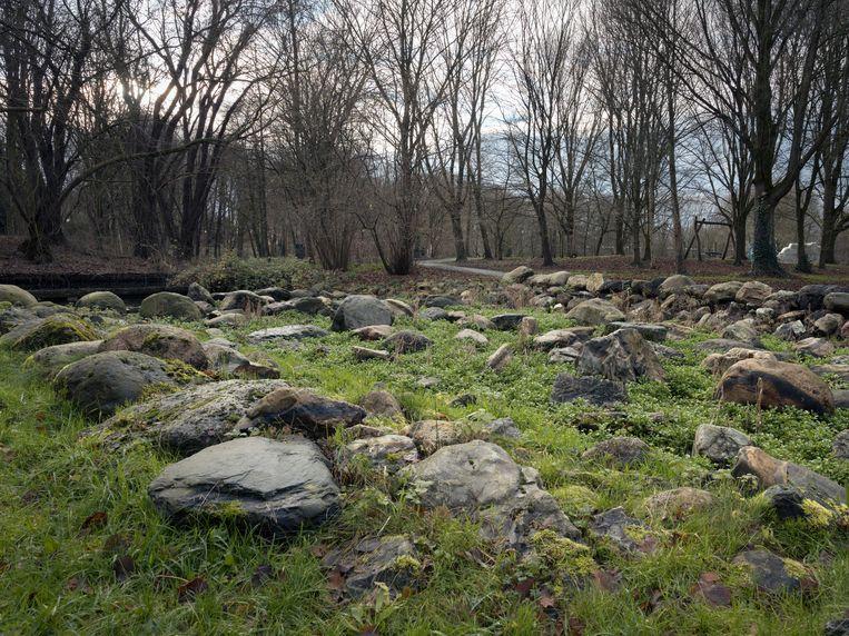 Door het slechte onderhoud is de biodiversiteit in het park opmerkelijk gering.  Beeld Maarten Boswijk