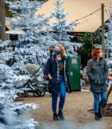 Dit seizoen geen Winter Efteling meer, decoratie per direct afgebouwd