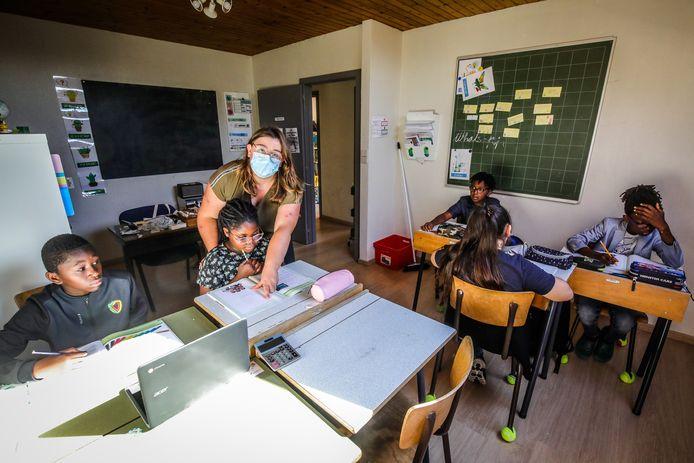 Bijbelschool de witte stamroos zoekt nog 3 leerlingen