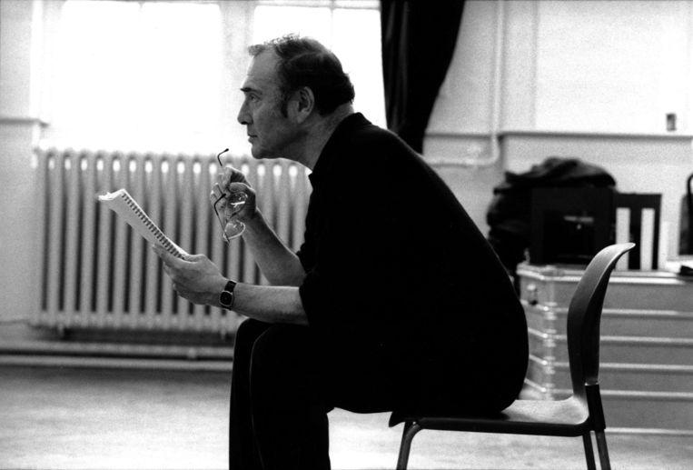 Over Harold Pinter: 'Hij kruipt in je hoofd.' Beeld KAPA
