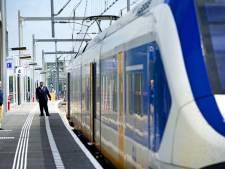 Jongen duwt conducteur uit de trein