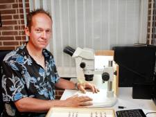 Deze Sprundelaar vindt nieuwe sluipwesp op Oude Buisse Heide: javra opica