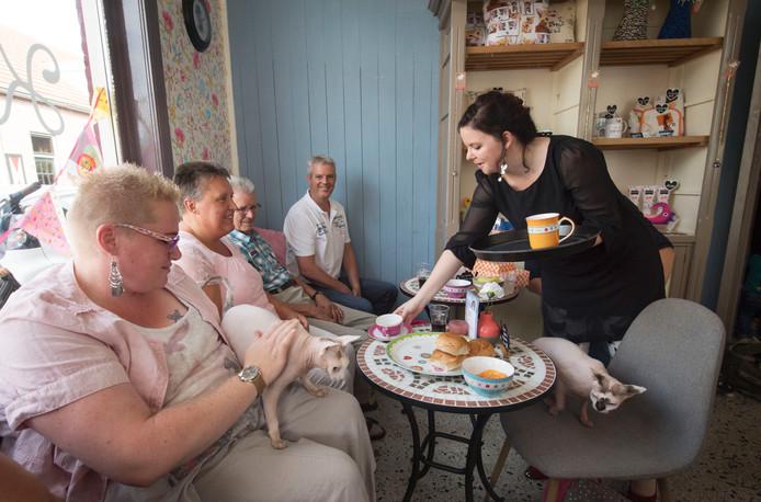 Dominique Mulder bedient gasten in haar kattencafé. Foto: Frans Nikkels