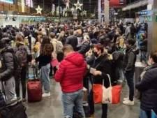 """Une foule de passagers massée à l'aéroport de Charleroi: """"Ce sont des familles"""", tempère le CEO"""