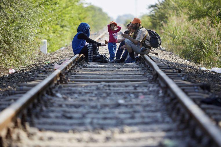 Een groep Syrische vluchtelingen heeft Hongarije bereikt vanuit Servie in 2015. Beeld ANP