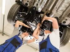 Als boomverzorger, recruiter of automonteur vind je zo een baan