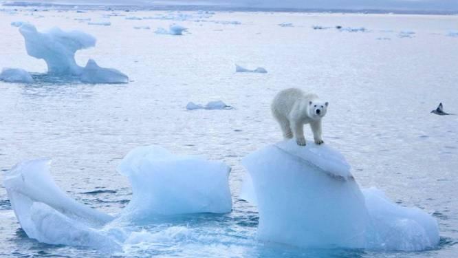 Alarmerend rapport: ijsoppervlakte zes keer zo groot als Duitsland gesmolten in noordpoolgebied
