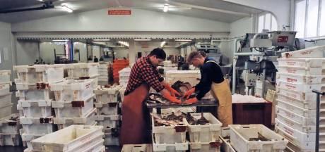 Vlissingen drukt door, vismijnactiviteiten weg uit Breskens