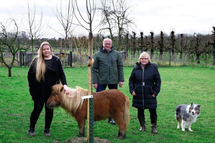 Linsey (l) met pony Lucky en haar ouders Gert-Jan en Louise van Ochten met Border Collie Blitz bij de nieuw aangeplante oude hoogstamfruitrassen.