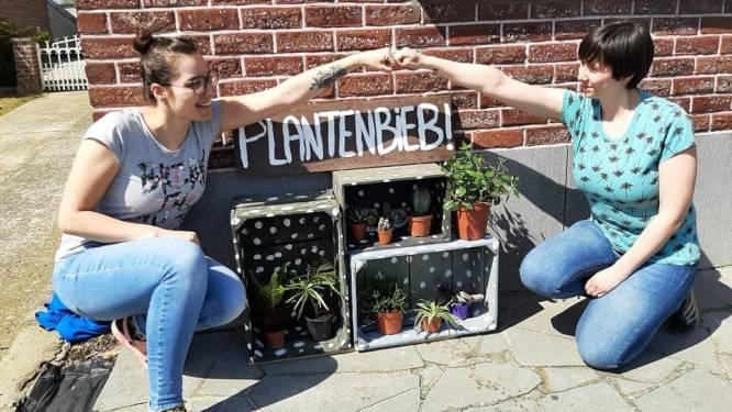 """Zussen Yana en Daphne starten Plantenbieb : """"Het gevolg van een uit de hand gelopen hobby..."""""""