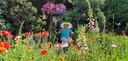 'Mijn schoonmoeder Lies van der Geugten (96) genietend van haar prachtige tuin met grote vijver in Nuenen die altijd door haar zelf is onderhouden. 'Hier ben ik altijd op vakantie' zegt ze zelf.'