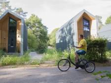 Laverhof schaft zes kleine huisjes aan voor Wijbosch