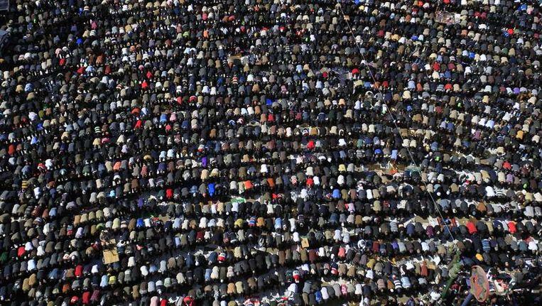 De biddende Egyptenaren vanmiddag. Beeld null