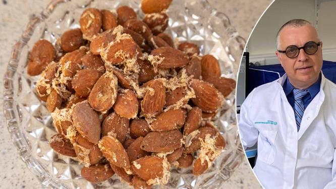 """Prof waarschuwt voor meelmotten in keukens: """"Gooi oude etensresten weg en bewaar droge voeding in glazen bokalen"""""""