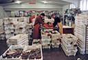 De vismijn in Breskens in de tijd, jaren geleden, dat er ook nog aardig wat vis werd aangevoerd.