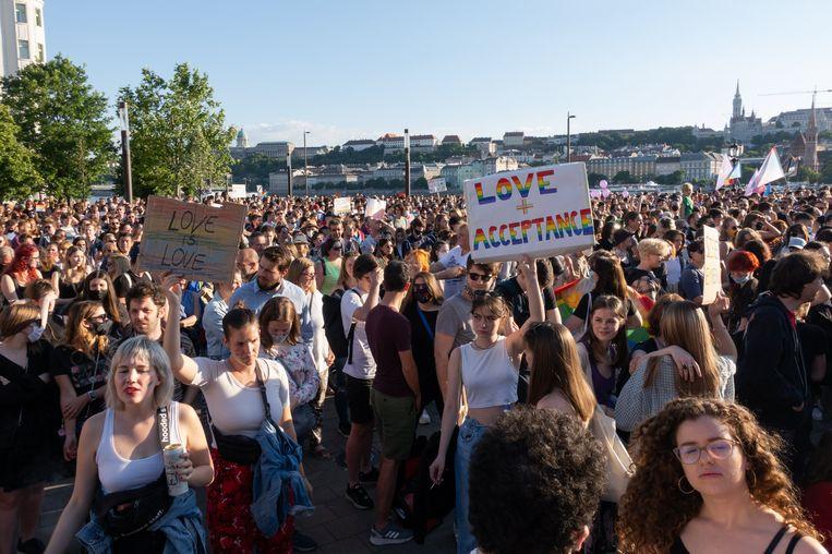Protest in Boedapest tegen de wet tegen 'homopropaganda'. Beeld Photo News