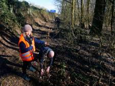 Waarom Bob stiekem jonge boompjes plant langs de A27: 'Miljard euro voor minuutje tijdwinst, dit gaat te ver'