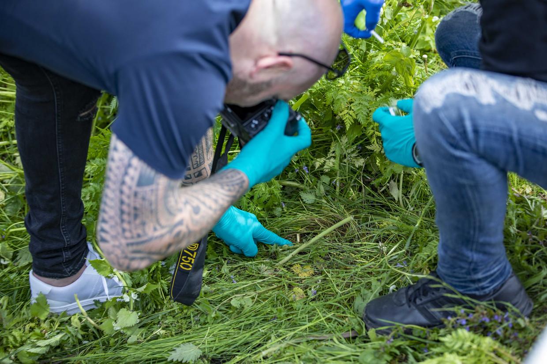 Sporenonderzoek in het weiland in Broek in Waterland.  Beeld ANP