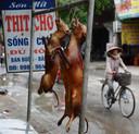 Vente de viande de chien dans une rue de Hanoï (archives)
