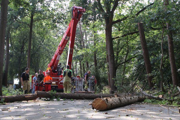 Op de Bisschopsweg in Lunteren zijn door brandweerlieden vijf bomen die gevaarlijk overhingen gekapt.